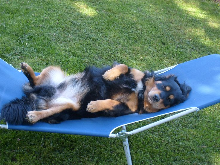 Beda relaxes.