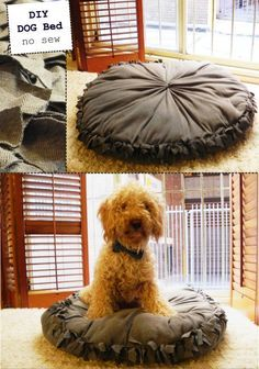 "Pinner says, ""DIY no-sew dog bed! (this would be cute to  make ahead for various seasons...watch for clearance fabric and save until the next time the holiday/season rolls around)."" So cute, wanna try this! Pin now read later!"