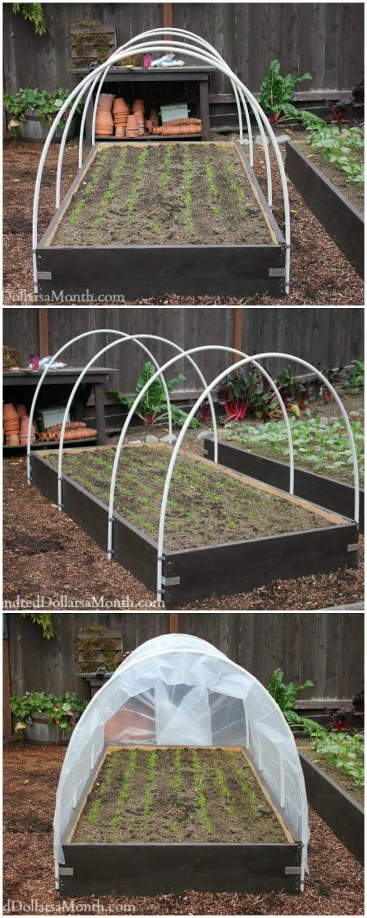 Mini Underground Greenhouse
