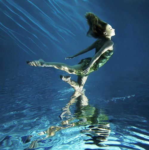 Photos taken underwater are majestic forms of art