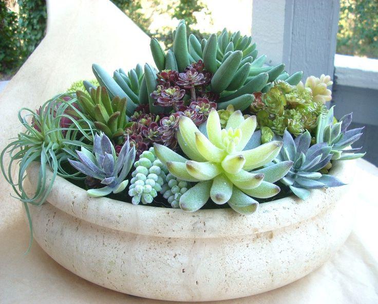 Faux Succulent Indoor Garden, Artificial Cactus Garden, Modern Artificial Succulent Centerpiece by JessWrightDesigns on Etsy