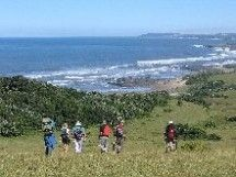 Wild Coast Walks - We organise slackpacking along the Wild Coast of the Eastern Cape. Walk between a chain of connected family run hotels and eco-friendly guest lodges from Mbashe River (Haven Hotel) in the north to Kwelera River (Areena Resort) in the south, an unbroken stretch of golden beaches and wild untamed Transkei scenery.