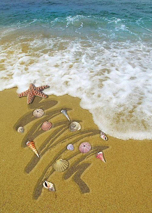 ♥ Christmas in the tropics #Beachsigns Christmas Pinterest