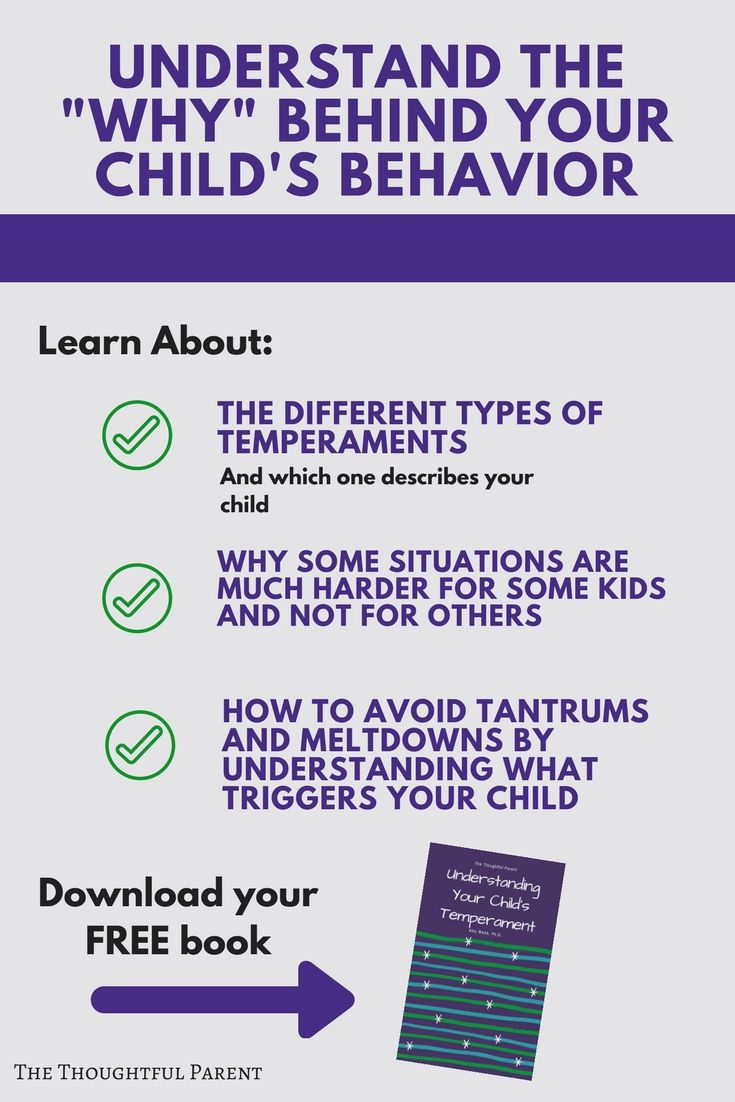E Book Understanding Your Child S Temperament