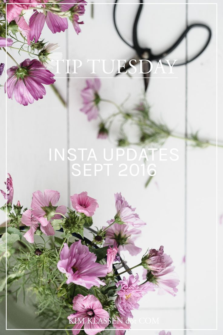 Instagram Updates September 2016