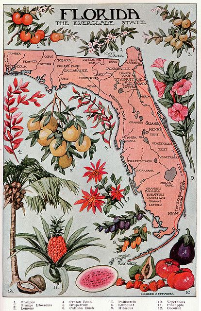 vintage florida map (Thank you, my lovely and always thoughtful soul sister @lynda.com.com.com Brown Rozier )