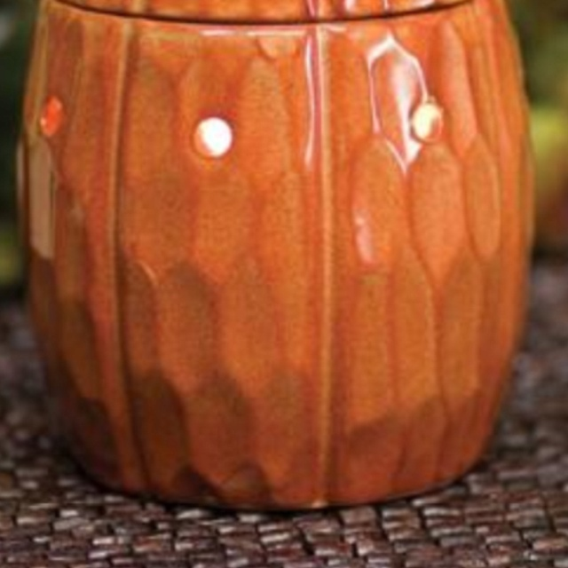 Pumpkin September 2017 Warmer Of The Month