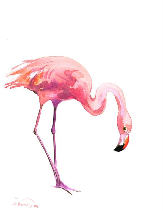 Two Flamingos Original watercolor painting 14 x 11 by ORIGINALONLY