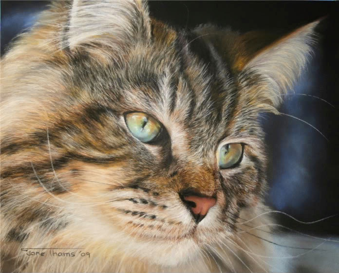 """Commission Pastel Painting / Drawing Pet Portrait Dog Cat 11"""" x 14"""". - I'm amazed this is a painting!"""