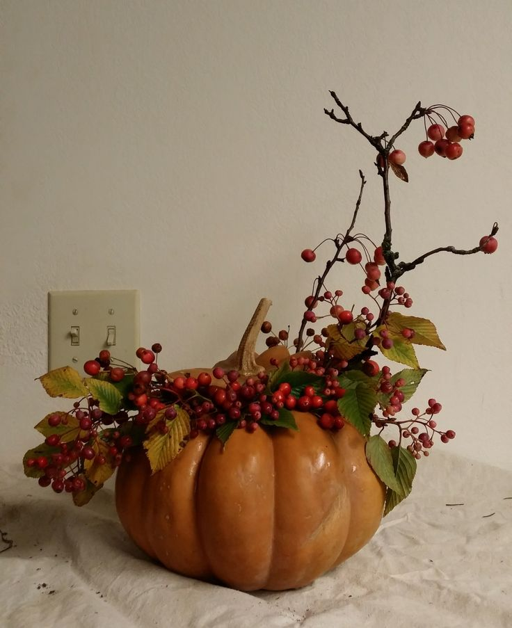 Pumpkin & Berries  www.haydenregina.com