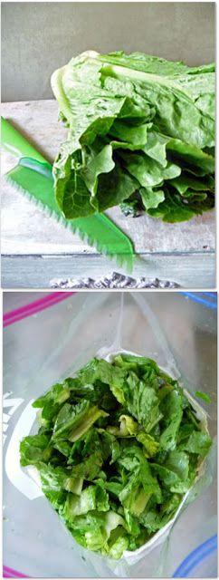 Life Tastes Good: DIY Salad Bag