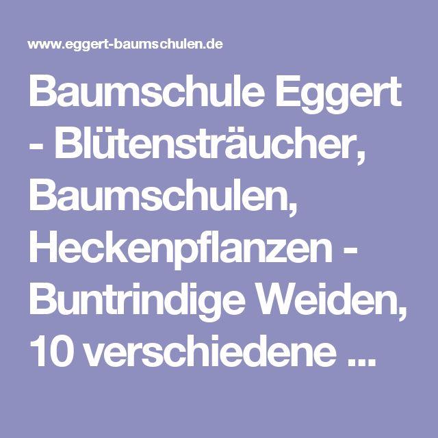 baumschule eggert image gallery deutsche eiche. Black Bedroom Furniture Sets. Home Design Ideas