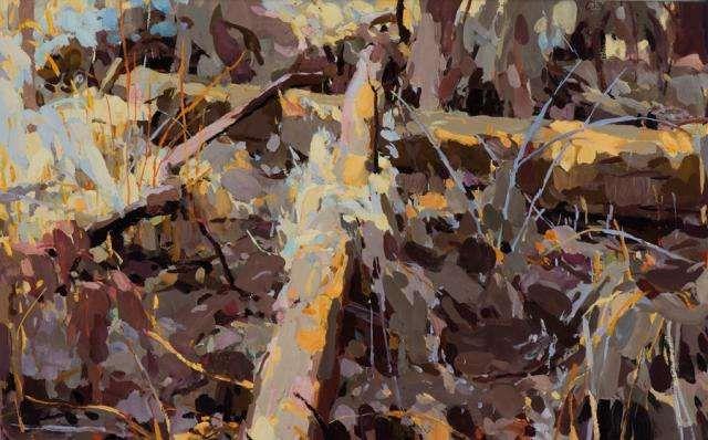 Impasse, Kalorama 2009 oil on linen 41 x 66 cm