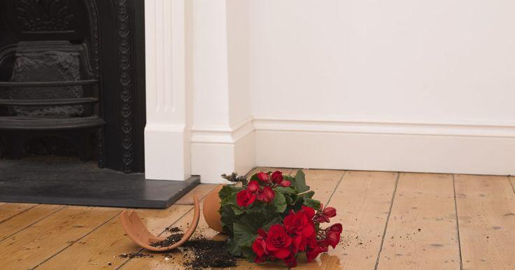 ¿Cuánto pegamento es suficiente al instalar un piso flotante?. La instalación de un piso flotante es una manera fácil y relativamente barata de tener nuevos pisos de madera. Los pisos flotantes, atractivos y duraderos, también llamados pisos de ingeniería, vienen laqueados y generalmente los puedes instalar tú mismo en un fin de semana. Algunas instalaciones de pisos flotantes requieren un poco de pegamento ...