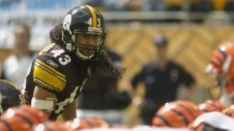 Marvin Lewis should know: Troy Polamalu, Ed Reed among NFL's best ever | NFL | Sporting News
