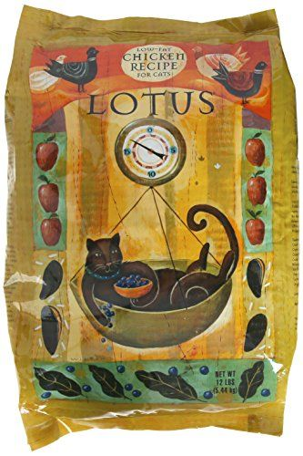 Lotus Senior Cat Food, 12 lb. *** Be sure to check out this helpful article.
