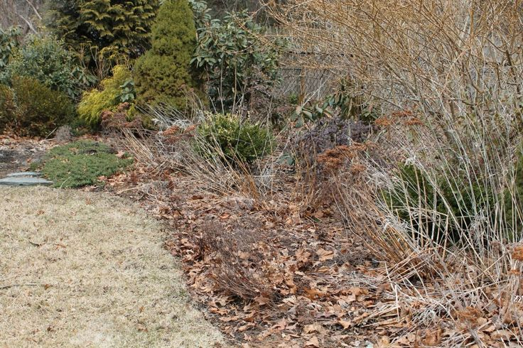 Spring Cleanup – Getting your Garden Ready for Spring