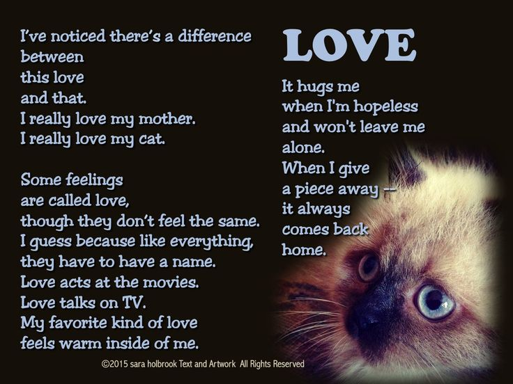 The whole world needs a little love right now! Use my poem as a discussion starter/writing prompt. Begin by reading and determining if there are any unknown words. Have students read aloud, practicing L sounds. Ask: Love vs. mere affection, what's the difference? (discuss word meaning).Writing Prompt: What does love look, feel, sound, smell, taste like? (Grandma's soup?)  Ask students to include cultural examples. May be illustrated with photos or pictures. Share aloud!