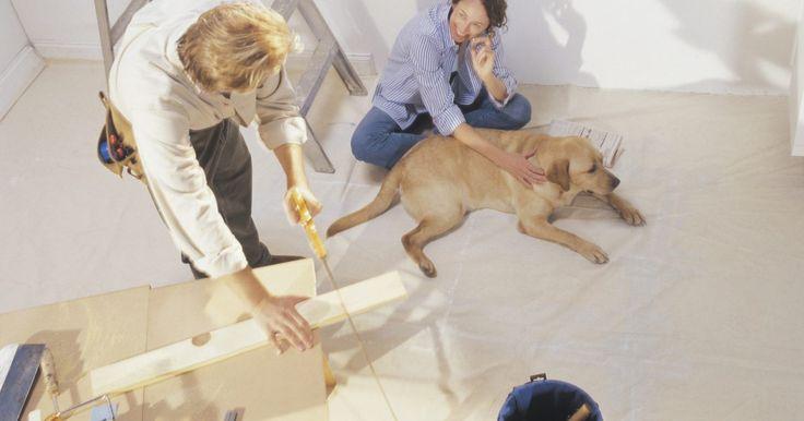 Como remover tinta de um cão. Os cães têm um senso de devoção e amor que faz parte de seu temperamento. Muitos cães são puxados pela sua natureza para ficar ao lado de seu mestre, sempre que possível. Os proprietários de cães valorizam essa característica, mas isso pode significar que o cão fica, diariamente, no caminho das tarefas diárias domésticas. Se seu cão ficar muito ...