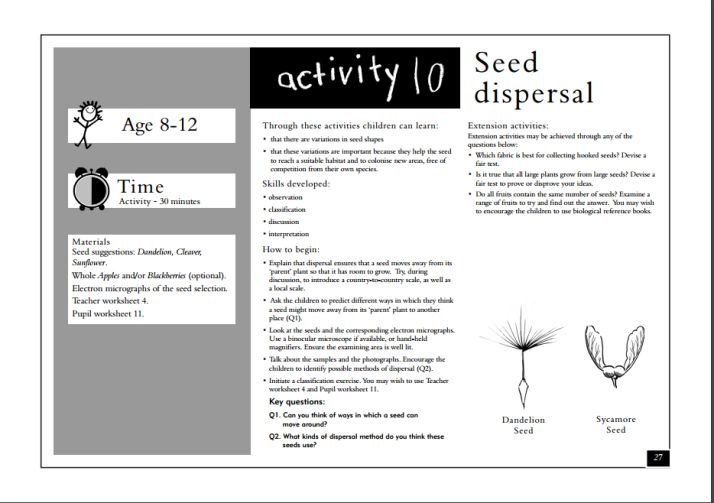 Seed Dispersal Activity- Free Printable