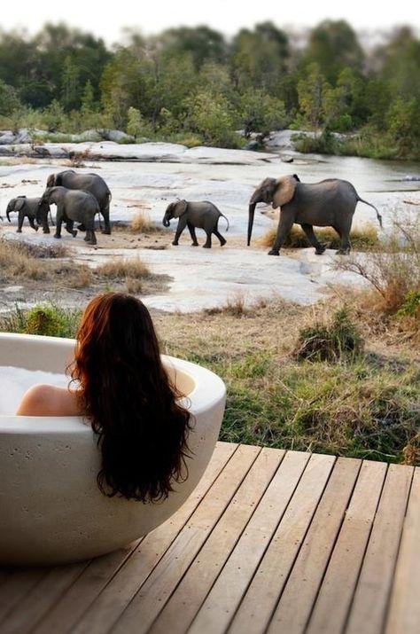 Londolozi Granite Suites | Sabi Sands Game Reserve | Kruger National Park | Luxury Travel | Resort | Destination Deluxe