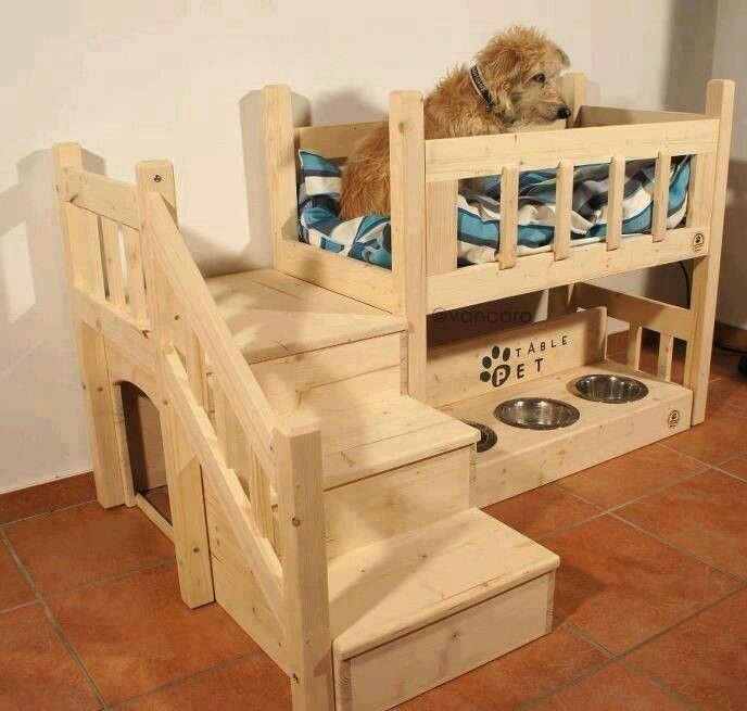 Cute idea for the 4-legged children