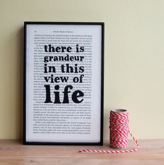 Charles Darwin Quote on Upcycled Book Page Framed Typographical Art