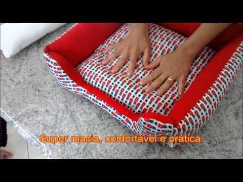 Caminha Cachorro Belinha - YouTube