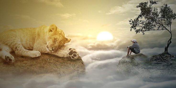 Pracovať s vlastným myslením a využívať jeho potenciál nás naučí efektívne zvládať akékoľvek životné situácie. Naše myslenie, sme my. Tak, ako myslíme, tak aj prežívame a následne konáme.  Ak potrebujeme čokoľvek v našom živote zmeniť, najprv