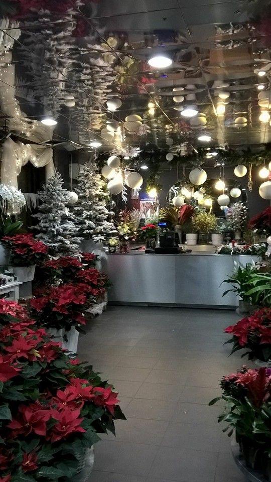 Fiorito Lecco: un negozio di fiori carico di magia grazie agli addobbi natalizi. #Natale #atmosferanatalizia #addobbi #decorazioni