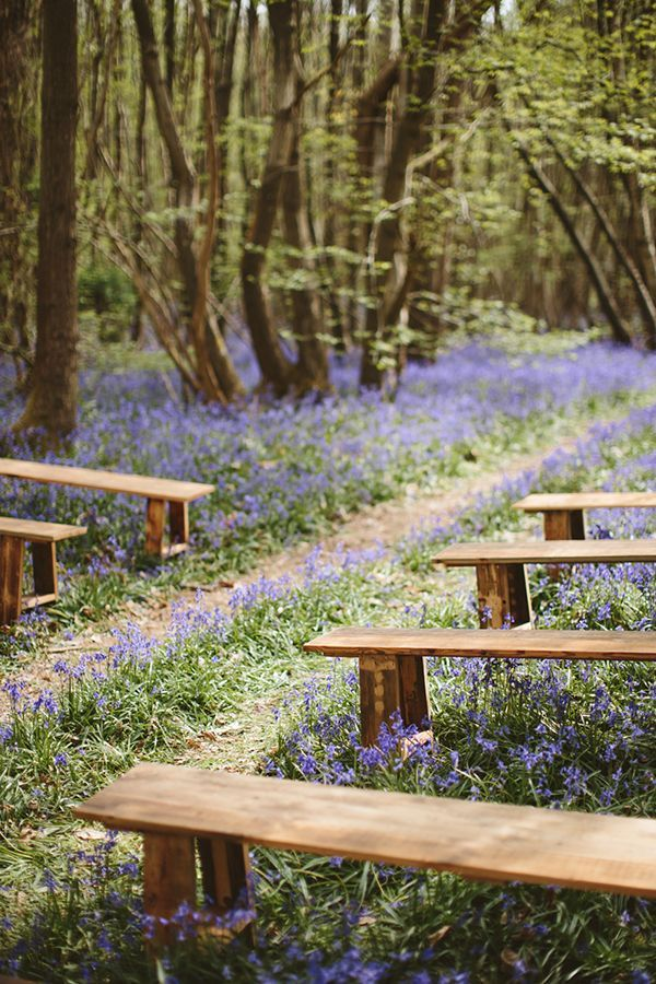 English bluebell wood wedding inspiration from Fern and Field for a modern outdoor spring celebration