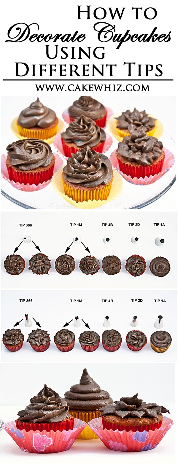 Learn how to DECORATE BEAUTIFUL CUPCAKES using various Wilton decorating tips. Just follow along this video tutorial and you will realize how easy it really is! From cakewhiz.com