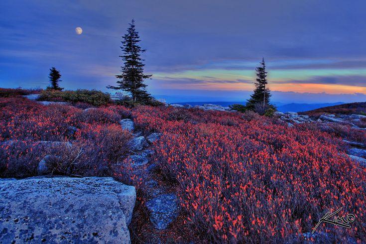 west virginia sunset: Fields Flowers, Westvirginia, West Virginia, Red Flowers, Sunsets Pictures, Blue Mountain, Sweet Home, Photo, Mountain Sunsets