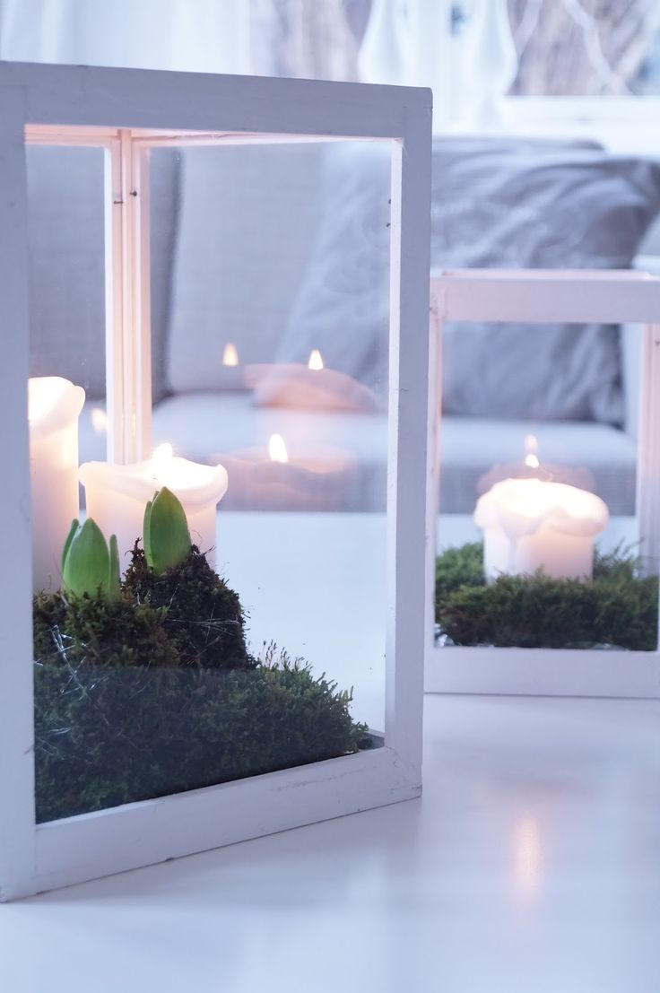 Winter decoration with hyacinths and candles.