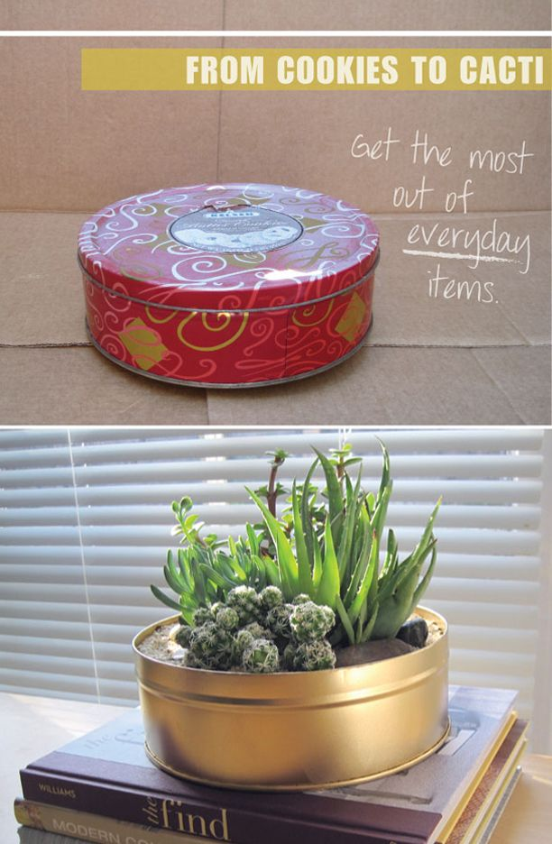 Modern planter made from a cookie tin.  See DIY @ http://designplusyou.blogspot.com