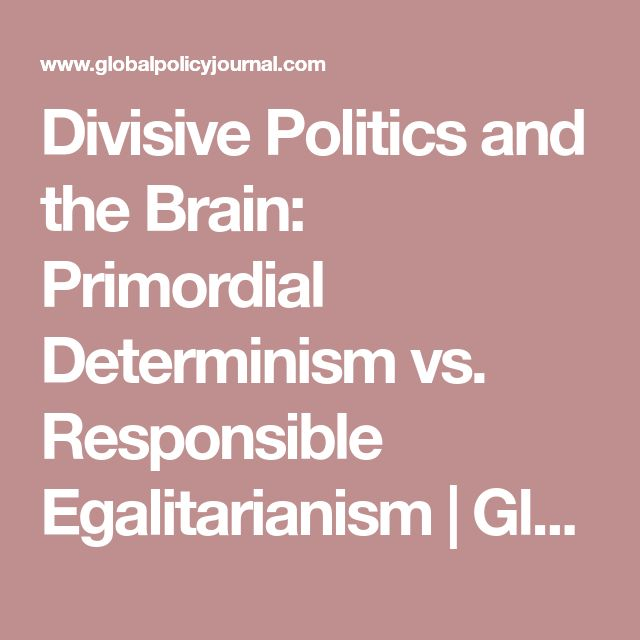 Divisive Politics and the Brain: Primordial Determinism vs. Responsible Egalitarianism | Global Policy Journal - Practitioner, Academic, Global Governance, International Law, Economics, Security, Institutions, Comment & Opinion, Media, Events, Journal