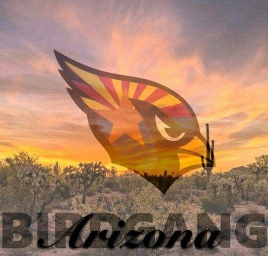 Arizona Cardinals 2015 #BirdGang #AZLadyBirds