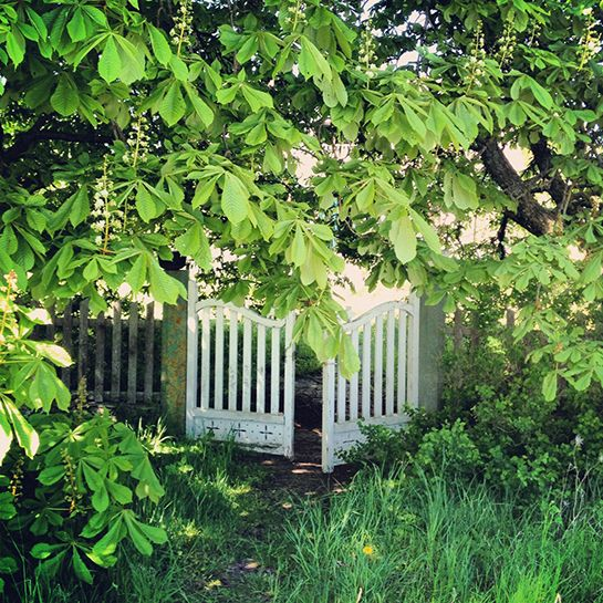 Slow Train B&B, Fårö, Gotland. #gate #garden #idyllic #summer