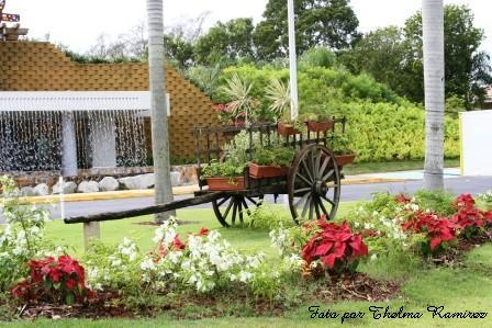 116 best images about parques botanicos mundiales on for Bodas jardin botanico caguas