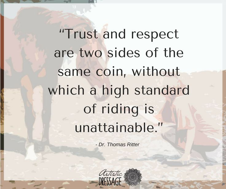"""Trust and respect are two sides of the same coin, without which a high standard of riding is unattainable."" - Thomas Ritter artisticdressage.com"