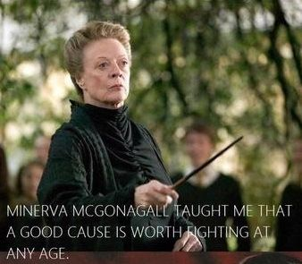 MINERVA MCGONAGALL TAUGHT ME THAT A GOOD CAUSE IS WORTH FIGHTING AT ANY AGE    (azevedosreviews.com)