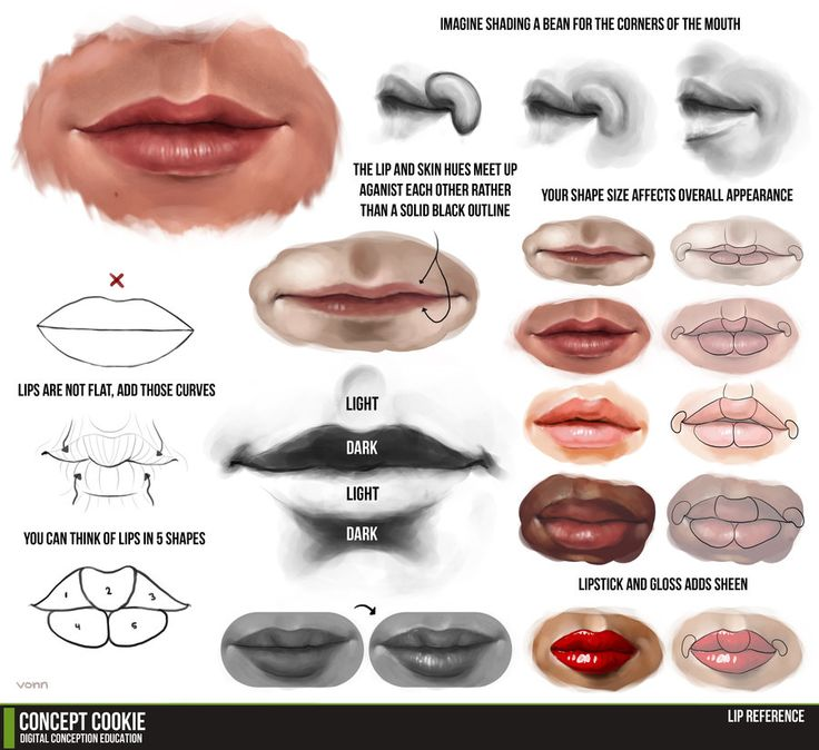 Lip Tutorial Resource by *ConceptCookie on deviantART