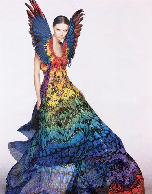 Alexander McQueen Parrot Dress 2008: Gummy Bears, Fashion Dresses, Rainbows Dresses, Alexander Mcqueen Dresses, Alexandermcqueen, Parrots, Gowns, Mcqueen Rainbows, Feathers