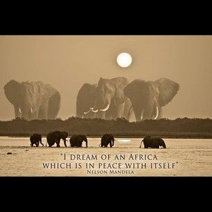 """""""I dream of an Africa which is in Peace with itself"""" ~ Nelson Mandela"""