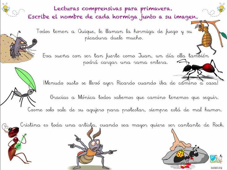 lectura  comprensiva de frases, las hormigas