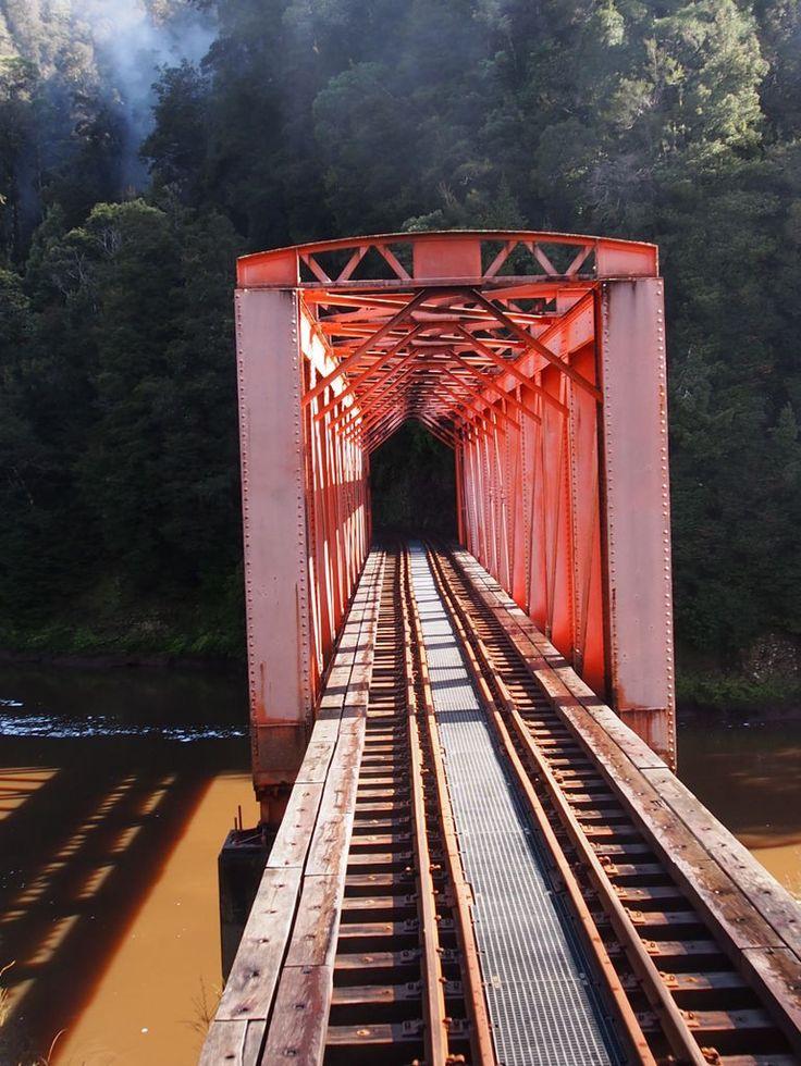 Tasmania west coast wilderness railway tour #australia