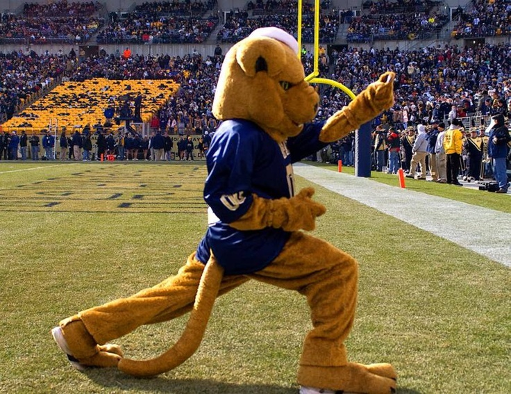 University of Pittsburgh Panthers mascot ROC the Panther