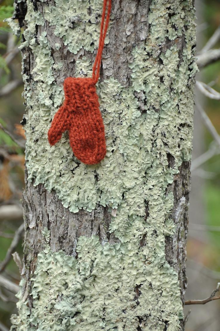 Everyone lichens http://www.merrymittens.com. Mini mittens make you you merry.