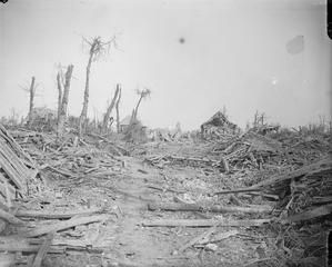 WWI 25 Sept 1916; View of Morval captured by the 5th Division, Somme, Battle of Morval. © IWM