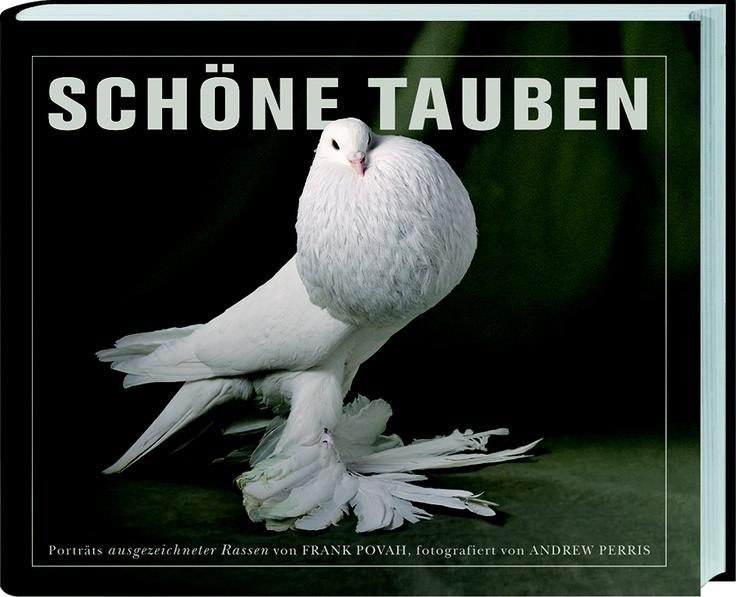 """Von Damen im Pelz und """"Nimm mich mit""""-Flehen in Taubenaugen! Band 7 der Bestsellerreihe von LV-Buch: """"Schöne Tauben"""" in Szene gesetzt von Andrew Perris."""